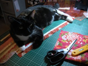 Sewing was delayed while Mischa had a cat nap