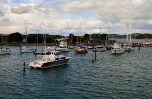sea princess (bay of Ils) NZ 137 (800x530)