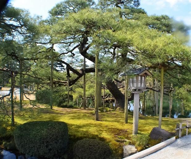 Kanazawa (10)