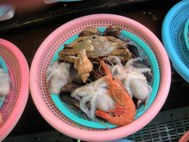 jagalchi-fish-market-busan-13