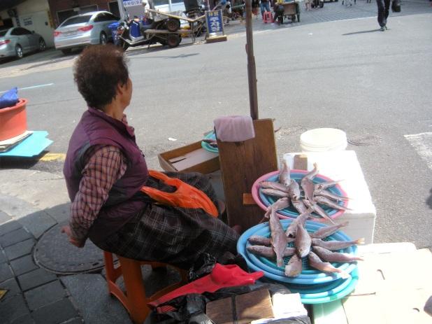 jagalchi-fish-market-busan-4