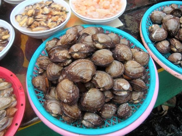 jagalchi-fish-market-busan-9
